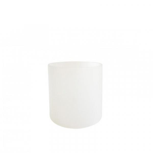 Lampenglas voor 1008