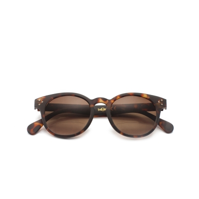 Babsee Piet Zonneleesbril Brown +3.0