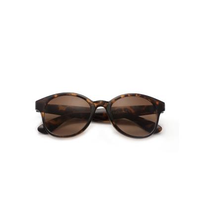 Babsee Kate Zonneleesbril Brown +3.0